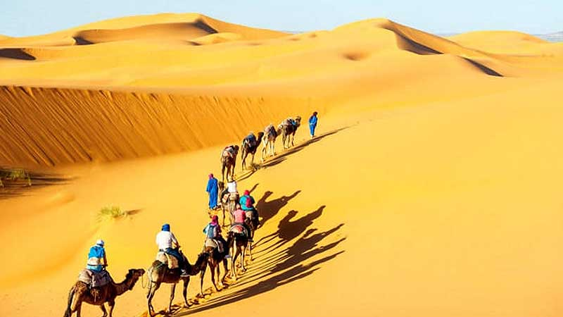 19 Nights 20 Days Rajasthan Tour