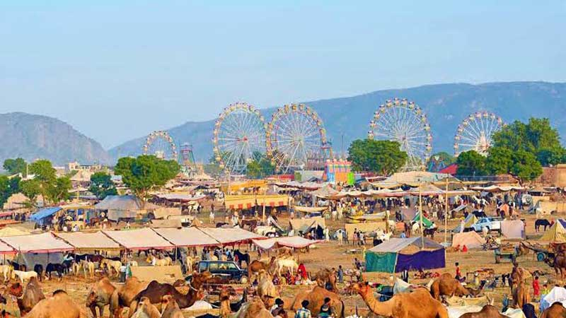 11 Nights 12 Days Rajasthan Tour