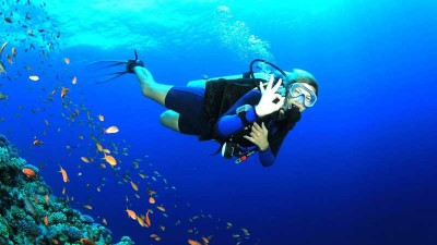 9 Nights 10 Days Andaman And Nicorbar Tour