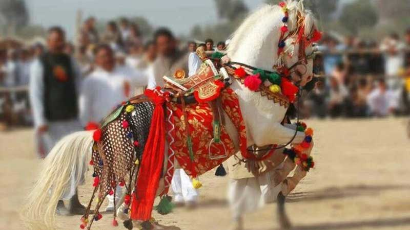 16 Nights 17 Days Rajasthan Tour