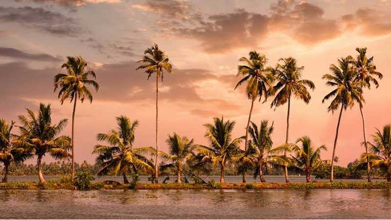 2 Nights 3 Days Kerala Tour