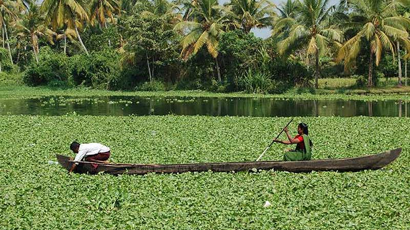 14 Nights 15 Days Kerala Tour